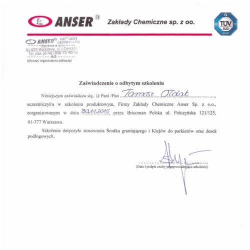 2015-11-31_Anser